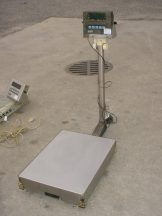 GSE SCALE SYSTEMS MODEL 350 DIGITAL SCALE, SINGLE PHASE